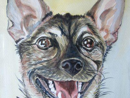 Moje rysunki psów