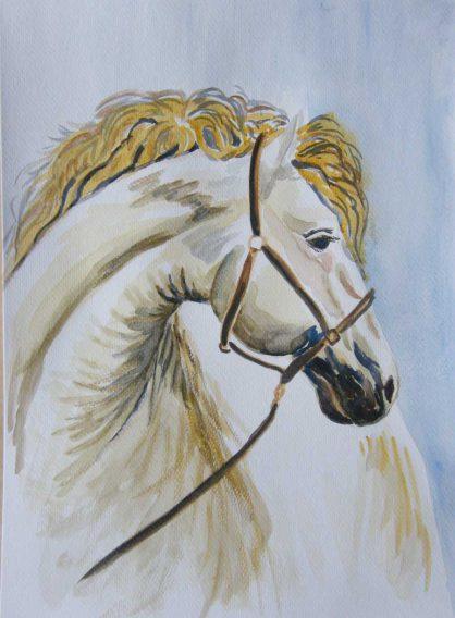 Konie - akwarela