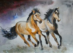 koń - akwarela - malgorzata Jaskłowska