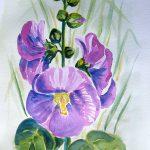 akwarela kwiaty malwy