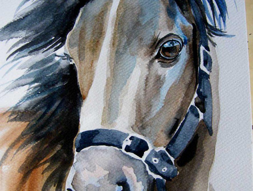akwarela koń