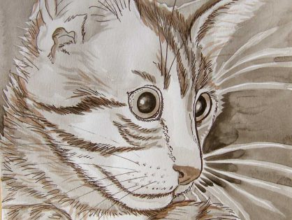 portret kota - artpen i tusz
