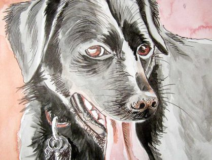 rysunek tuszem - portret psa
