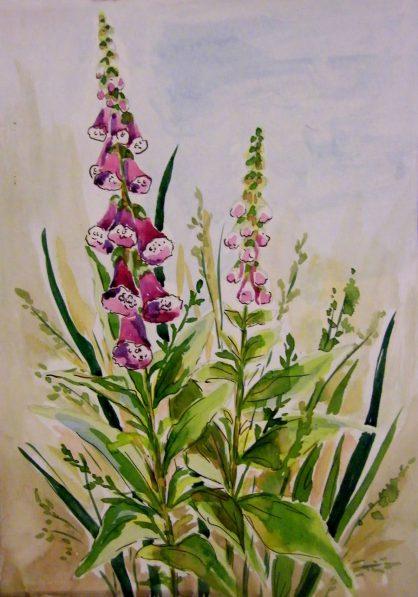 akwarela kwiaty - malgorzata jaskłowska