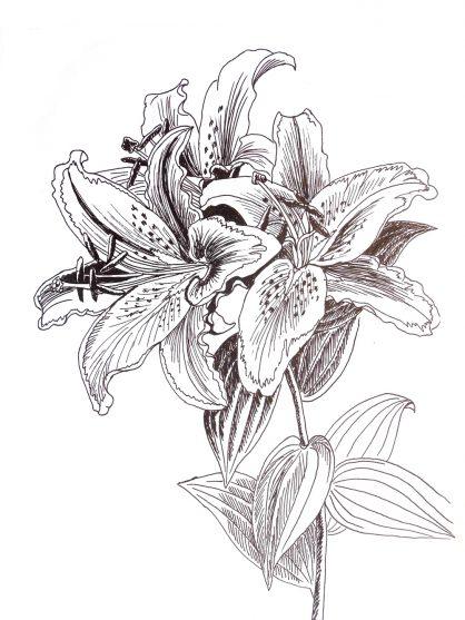 rysunek kwiaty artpen