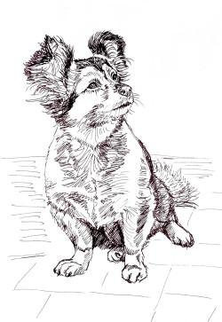 rysunek malgorzata Jaskłowska