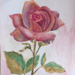 akwarela róża