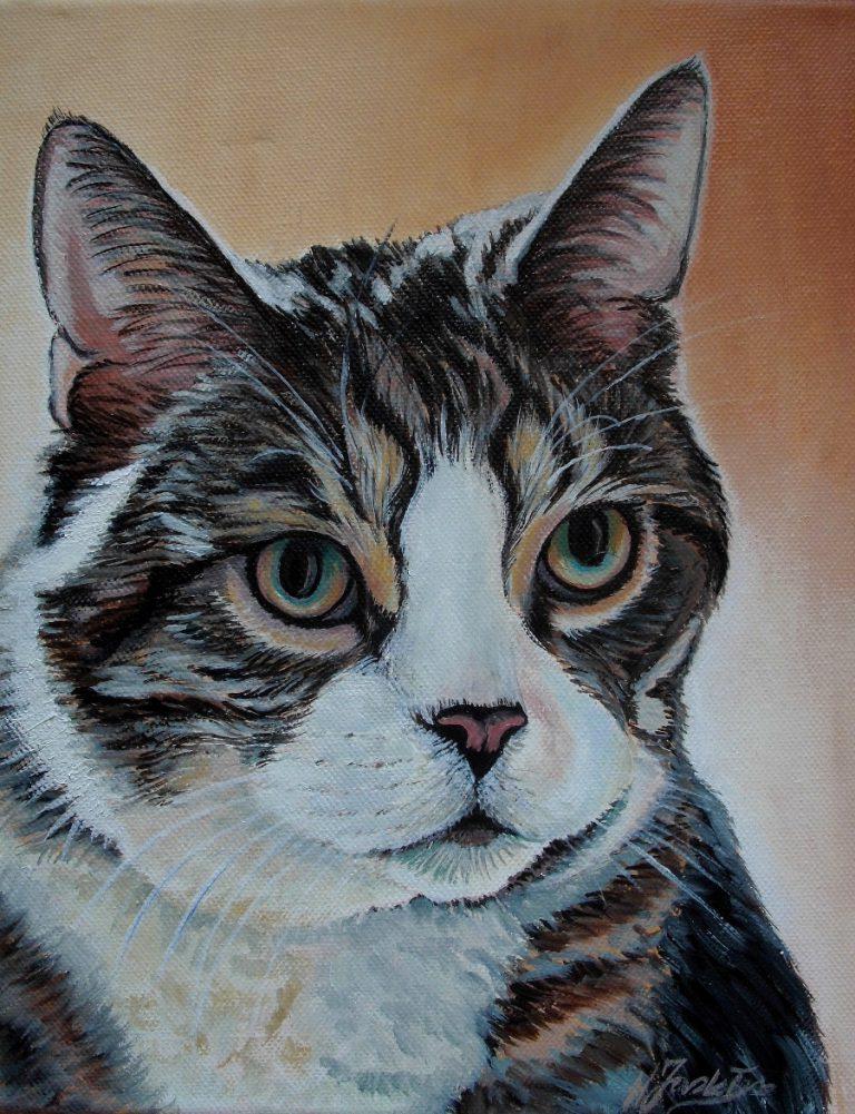 Nowe portrety kotów i psów
